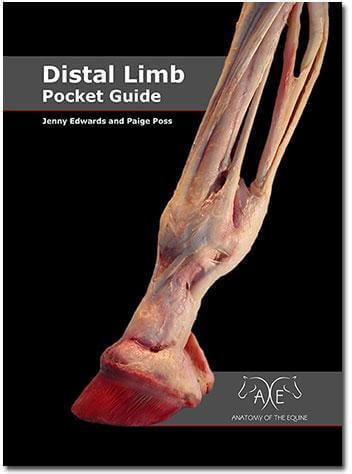 Paige Poss Distal Limb Pocket Guide