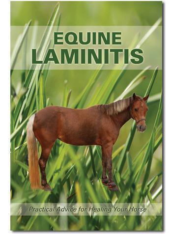 Paige Poss Laminitis Guide