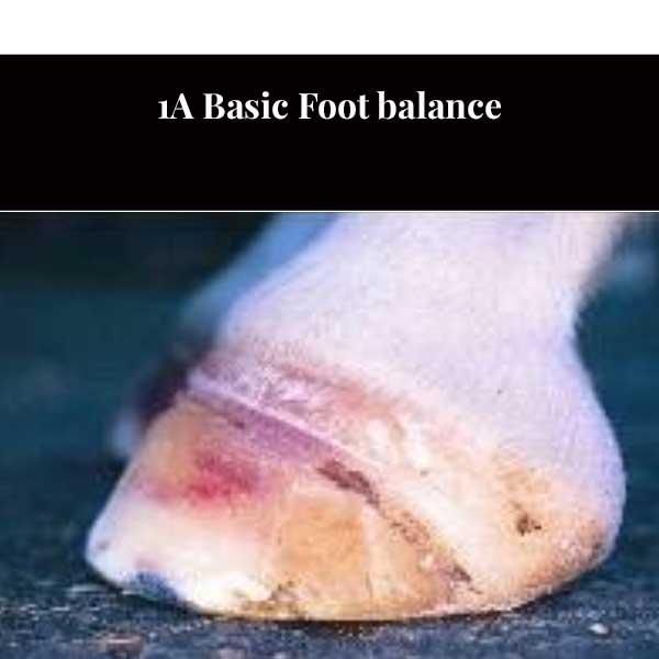 1A Bilanciamento del piede di base