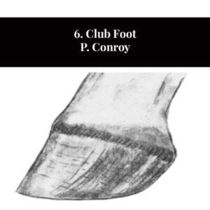 6. Pied bot P. Conroy