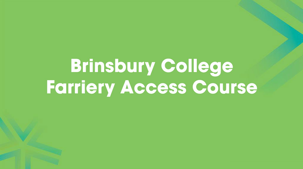 Brinsbury College Farriery Access Course